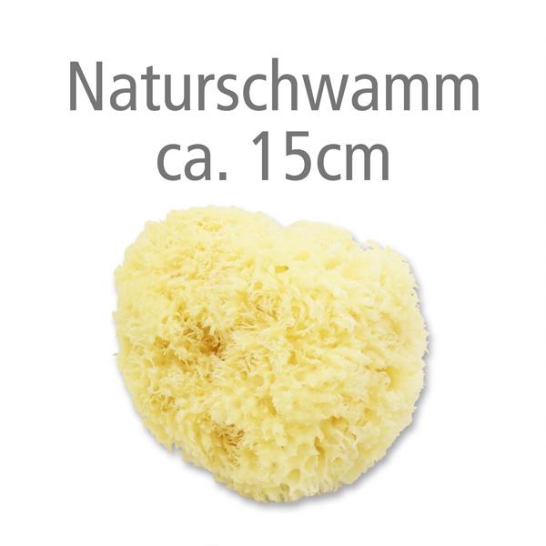 Naturschwamm ca. 15cm ohne Verpackung