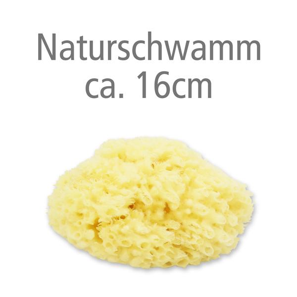 Naturschwamm ca. 16cm ohne Verpackung