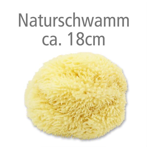 Naturschwamm ca. 18cm ohne Verpackung